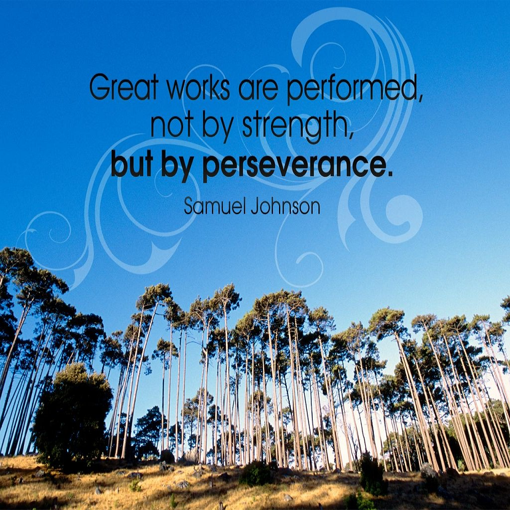 Great works are performed, not by strength, but by perseverance